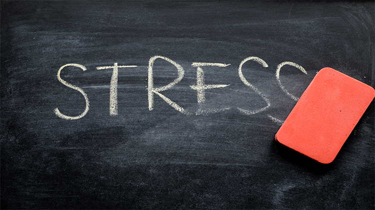 Overcoming Stress During Crisis and Grief