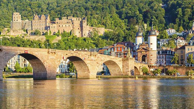 Rhine in Flames, Camp and Boat Trip