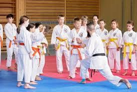 CYS SKIES Unlimited Karate