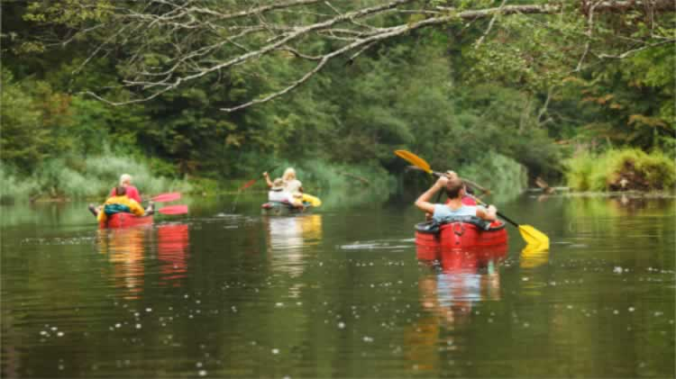 Saddles, Paddles, Sleeping Bags and Fireworks (Camp, Paddle and Bike Trip)